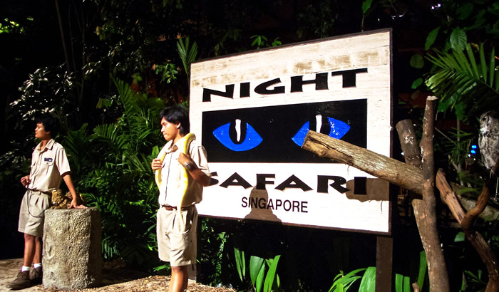 Singapore-Night-Safari_0